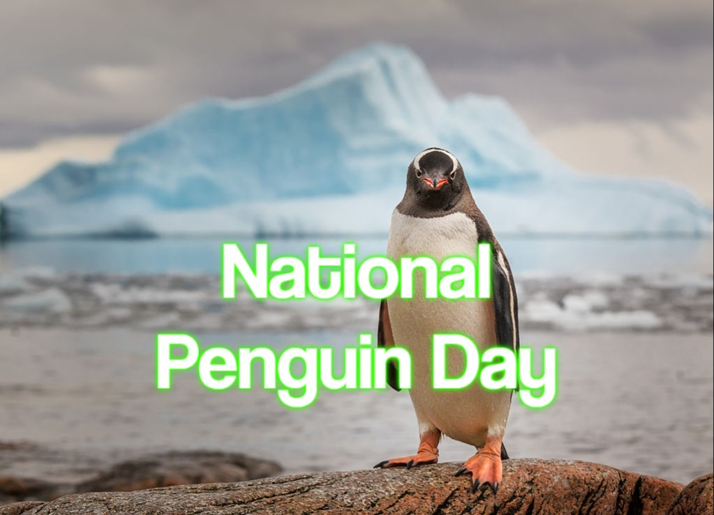 National Penguin Day