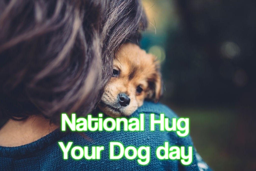 National Hug Your Dog day